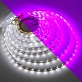 24-Volt 16.4-ft Color-Changing + White RGBW Flexible LED Ribbon Strip Light with 600xSMD3527